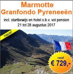Marmotte Pyreneés