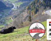 Marmotte Valais Zwitserland Tour des Stations